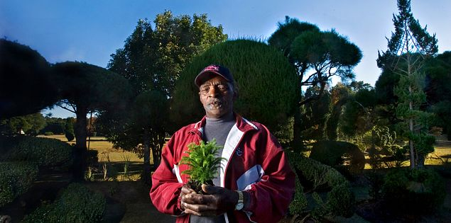 Pearl Fryar and his garden.
