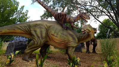 Help the Kids Find a Dinosaur in South Carolina