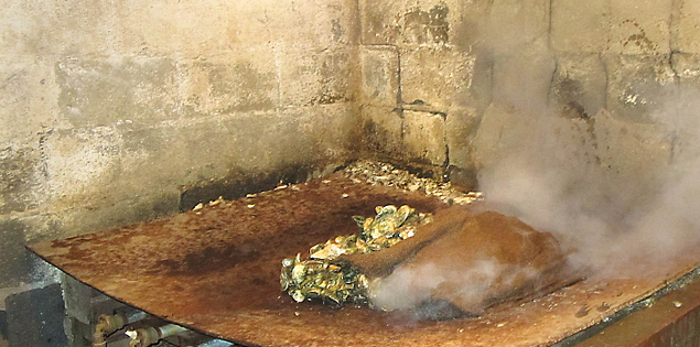 Oysters roasting in a pit at Bowens Island Restaurant