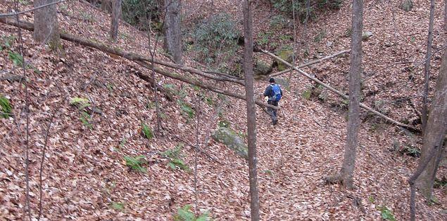 Hiking trails on the Palmetto Trail in South Carolina's Blue Ridge Escarpment