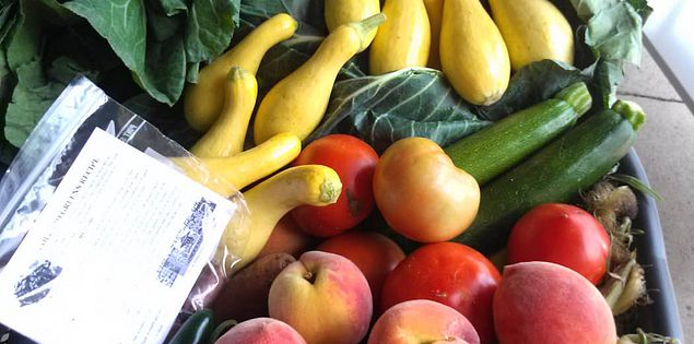 Fresh produce from South Carolina farmers at Columbia's Vista Marketplace