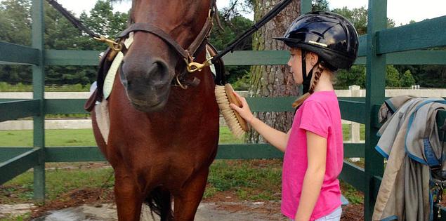 South Carolina's Three Fox horse farm in Blythewood