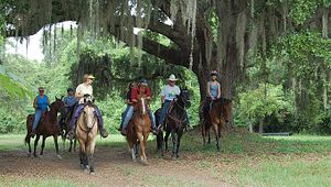 Mullet Hall Equestrian Center At Johns Island County Park