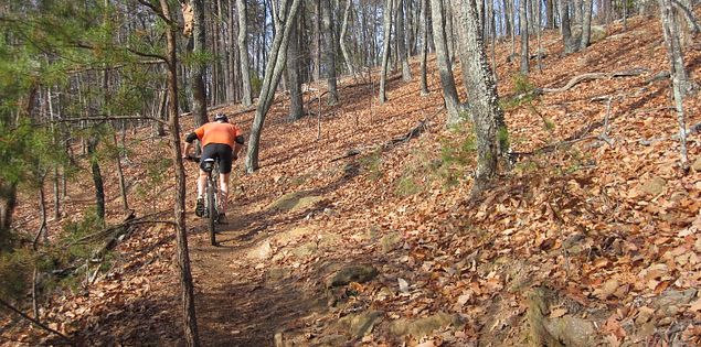 Paris Mountain State Park mountain biker