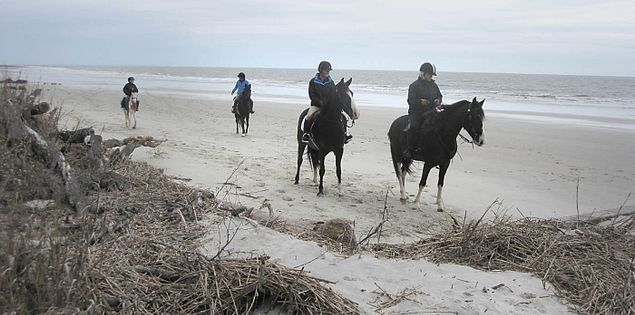 Horseback riding along Hunting Island State Park
