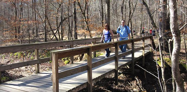 Hikers on a Harbison State Forest trail boardwalk