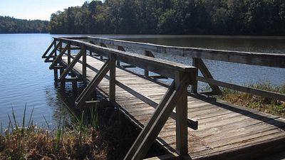 Serene Getaway at Chester State Park