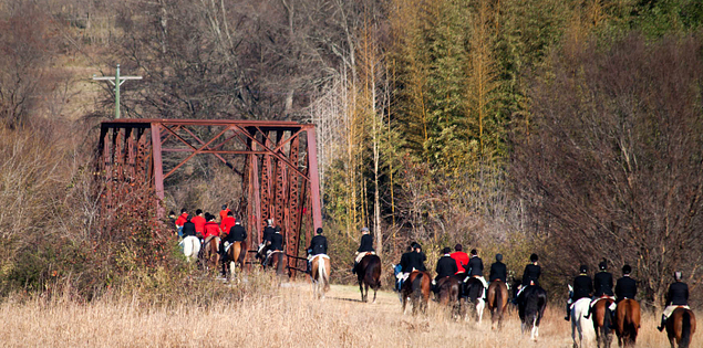 Riders and hounds heading out for Upstate South Carolina fox hunt
