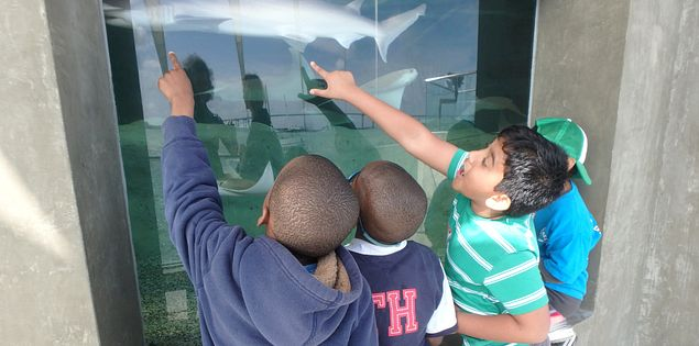 The SC Aquarium is one of the many kid-friendly places to visit in Charleston, SC.