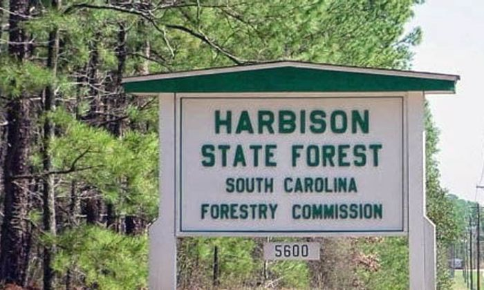 Harbison State Forest