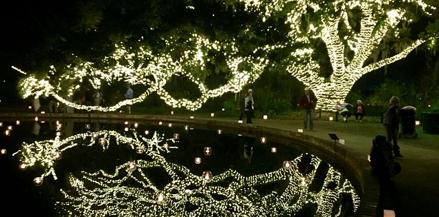 Brookgreen Gardens lights