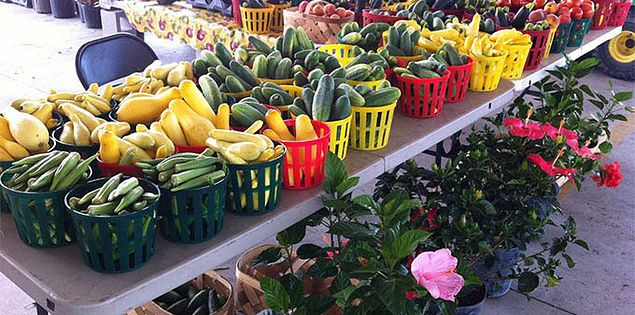 Image result for greenville state farmers market