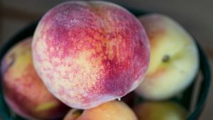 McLeod Farms Peaches