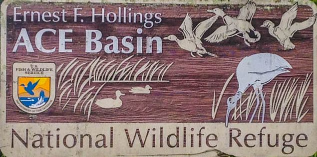 Ernest F. Hollings Ace Basin National Wildlife Refuge