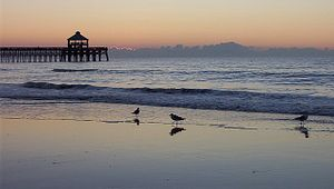 Charleston Coast Vacations offered by dunes properties