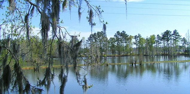 Big Cypress Lake RV & Fishing Retreat