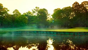 Palmetto Hall Plantation -The Robert Cupp Course