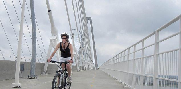 Bridge over Charleston Harbor and the Cooper River