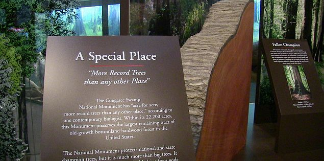 Harry Hampton Visitors Center in South Carolina's Congaree National Park