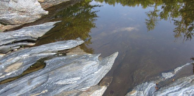 Sumter National Forest bordering Woodall Shoals on the Chattooga River