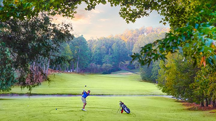 golf hickory knob