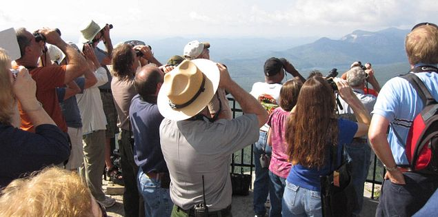 Birdwatching at Caesars Head State Park in Upstate South Carolina