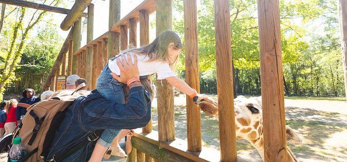 riverbanks zoo columbia