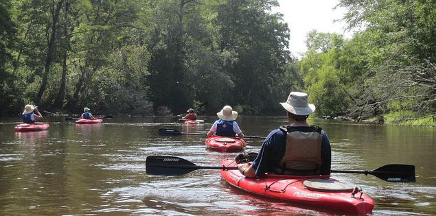Kayaking down the Edisto River in South Carolina's Lowcountry