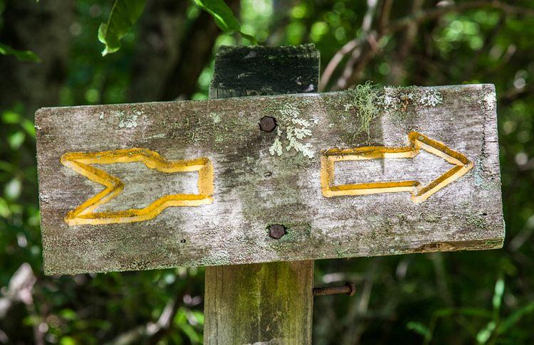 Interpretive Trails