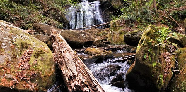 sumter national forest creek falls