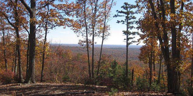 Enjoy picturesque views when you reach the top of Browns Mountain.