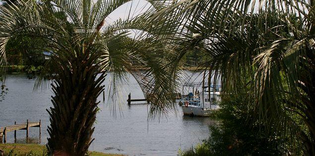 Enjoy beautiful views of Lake Marion while dining at Fayz on the Lake.