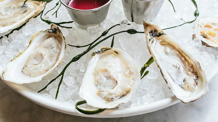 Oysters SC