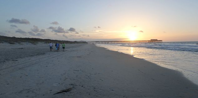 Visit Myrtle Beach State Park in South Carolina.