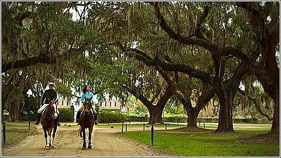 horseback riding boone hall plantation mount pleasant