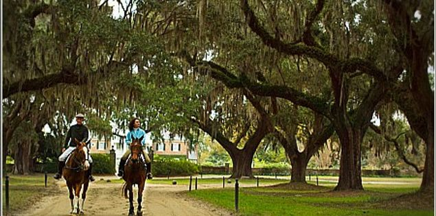 boone hall oak alley