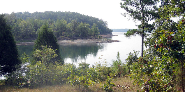 Lake Thurmond in Sumter National Forest