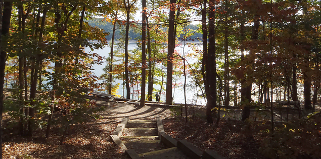 Campsites at Devils Fork State Park