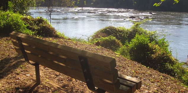 Bench overlooking the Congaree River in South Carolina