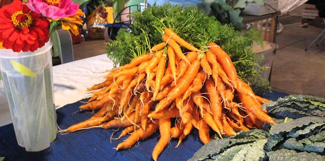 Carrots grown by City Roots in Columbia, South Carolina