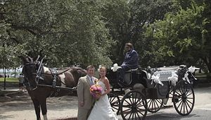 Carolina Polo And Carriage Company