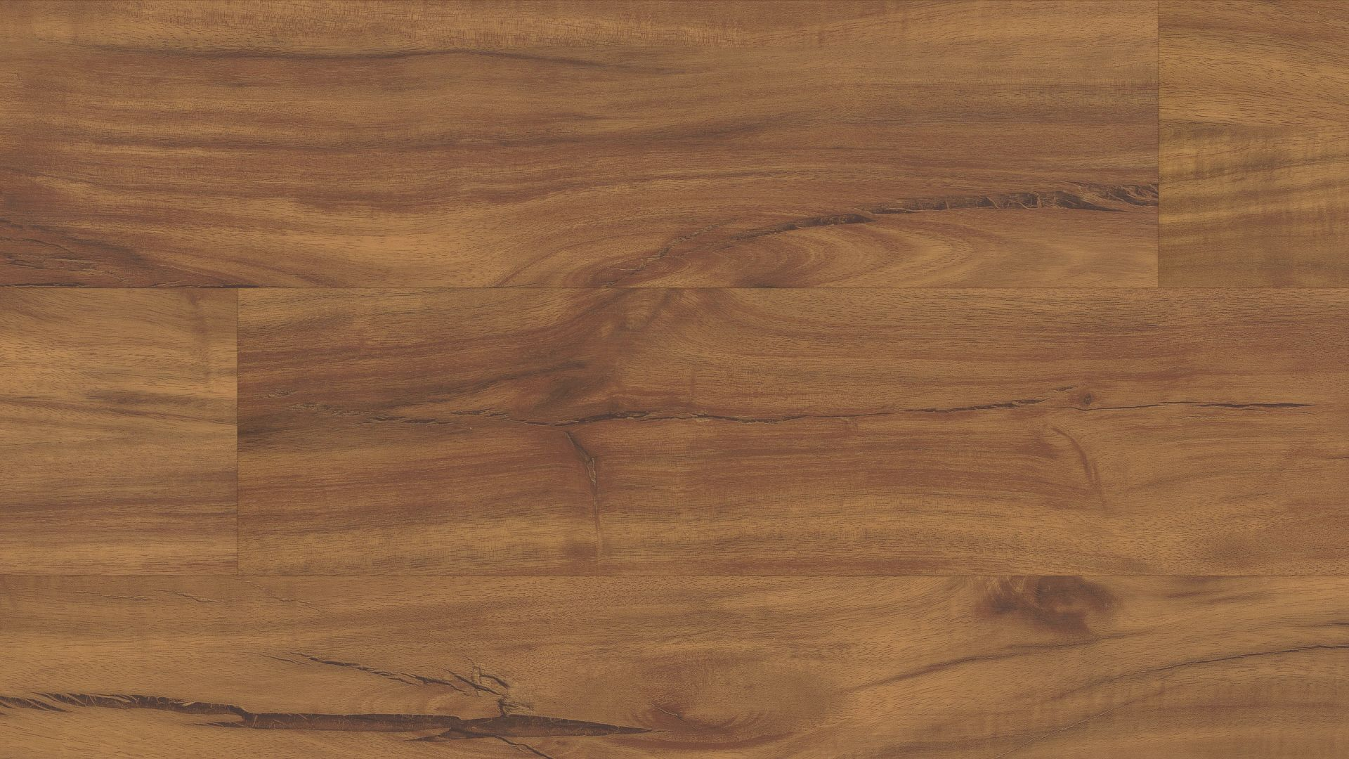 Gold Coast Acacia EVP Vinyl Flooring Product Shot