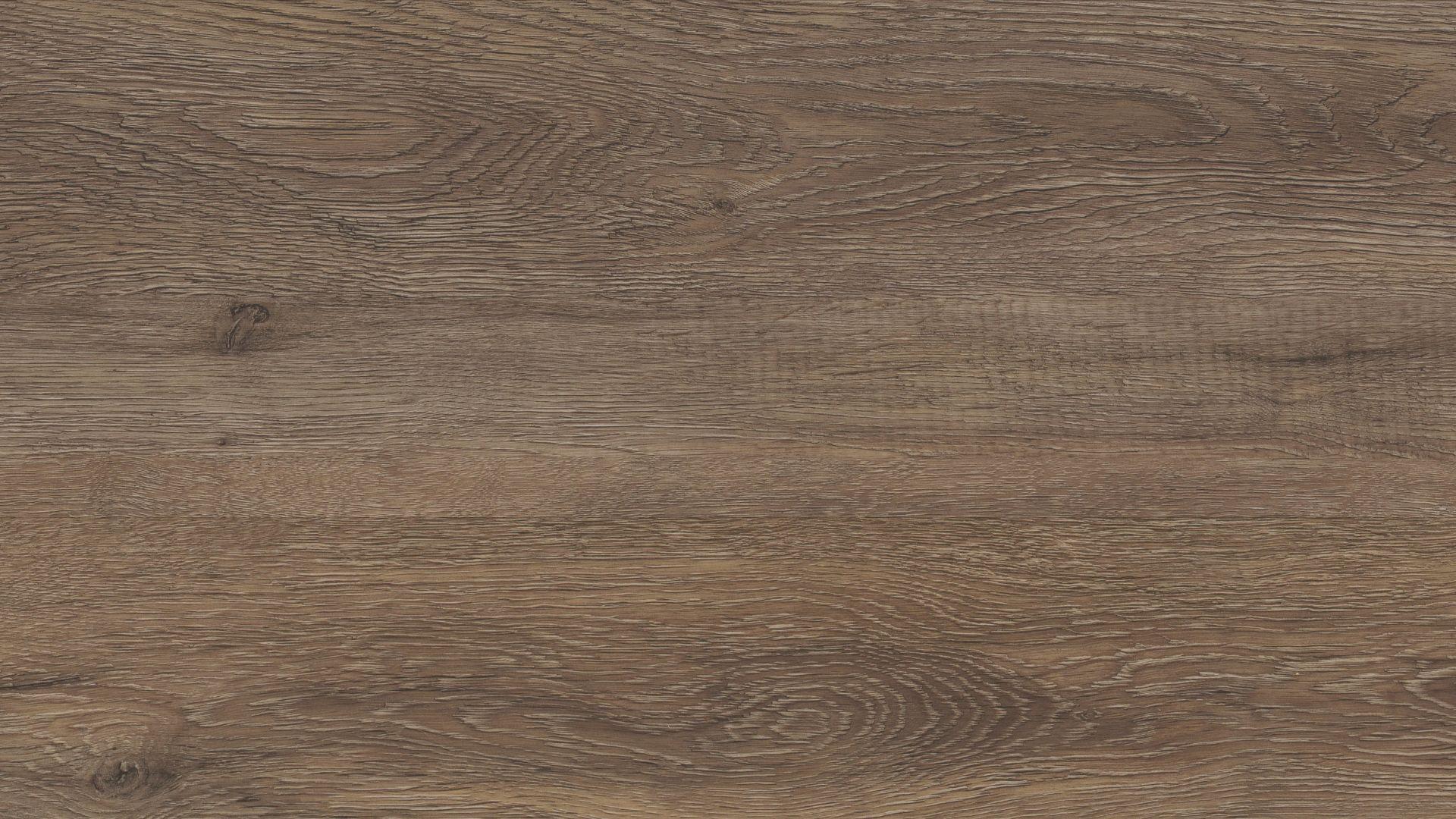 MUIR OAK EVP Vinyl Flooring Product Shot