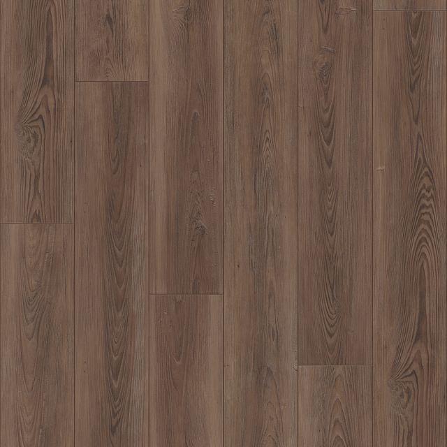Icon Pine EVP vinyl flooring
