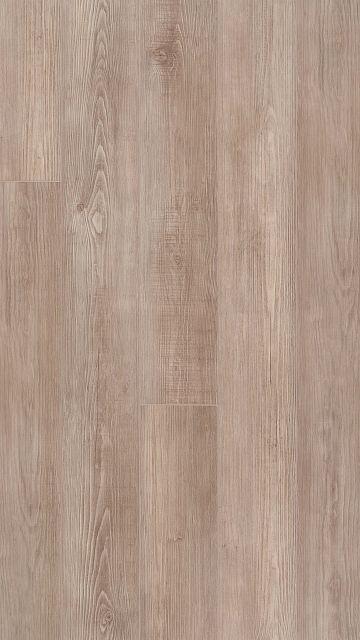 Willis EVP vinyl flooring