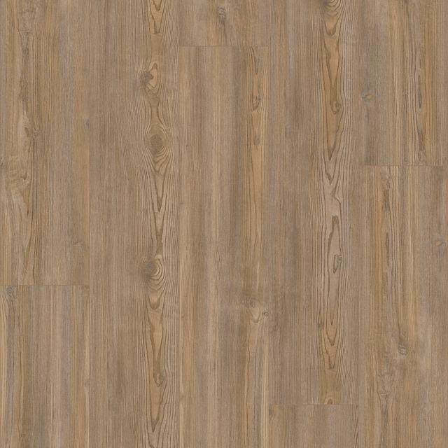 Treasure Pine EVP vinyl flooring