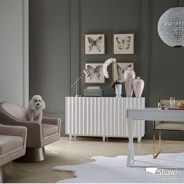 Designer Spotlight A New Year Poodle rug Hardwood.JPG