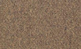 CAPITAL-III-BL-54280-ELECTION-80200-main-image