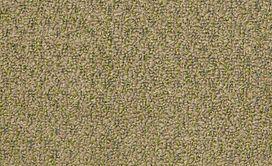 GARDENSCAPE-(T)-54629-WHEAT-GRASS-00700-main-image