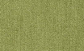 COLOR-ACCENTS-18-X-36-54786-BRITE-GREEN-62325-main-image